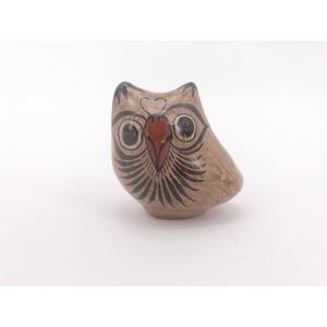 Mexican Tonala Owl